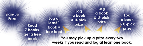 Kids Summer Reading Club 2014 Flowchart