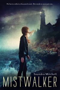 Local Author Fair-Mistwalker-saundra mitchell