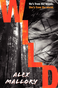 Local Author Fair-saundra mitchell- wild-mallory